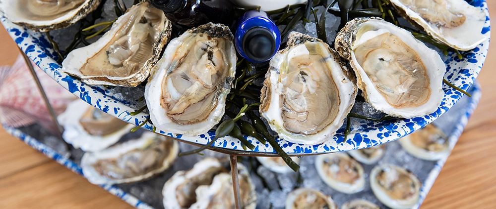 , Big Flavor at NICO's Oyster Bar, Author Pat Branning