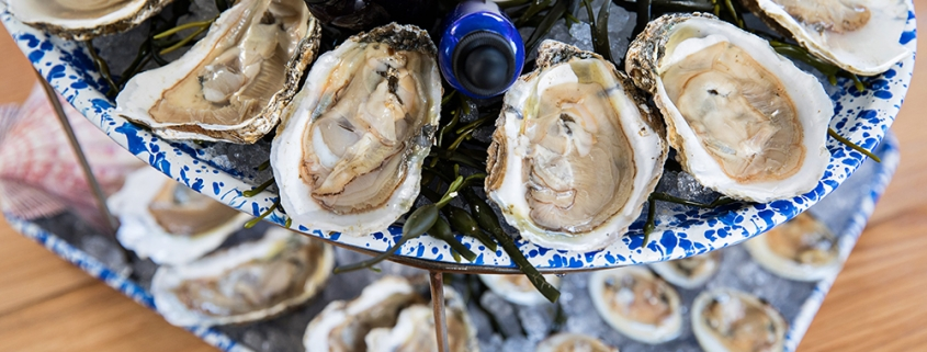 , Big Flavor at NICO's Oyster Bar, Author Pat Branning, Author Pat Branning