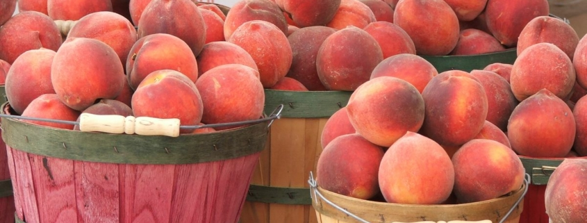 Peaches, Peaches – the Joy of Cobblers, Pies and Shortcakes, Oh My!, Author Pat Branning, Author Pat Branning